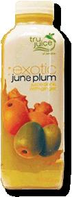 June_Plum-110x300
